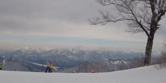 雪質サイコー!|かぐらスキー場のクチコミ画像