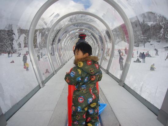 初雪そり|グランスノー奥伊吹(旧名称 奥伊吹スキー場)のクチコミ画像