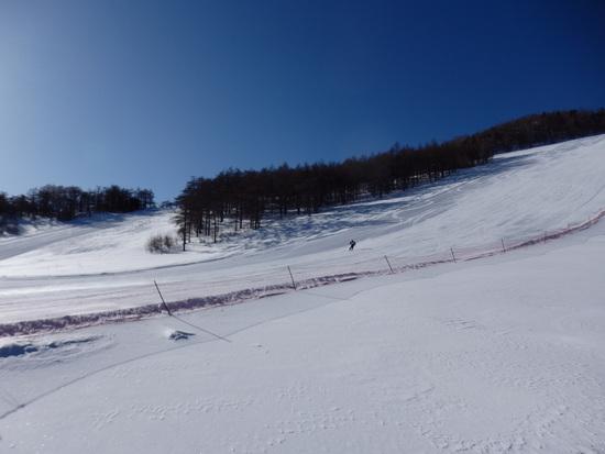 スキーヤーがほとんど