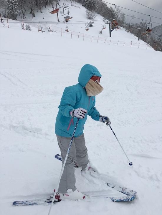 久々の積雪量|箱館山スキー場のクチコミ画像2