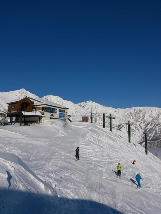 ゲレンデコンディション最高!|白馬八方尾根スキー場のクチコミ画像