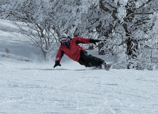 快晴・無風・雪質サイコー! 箕輪スキー場のクチコミ画像3