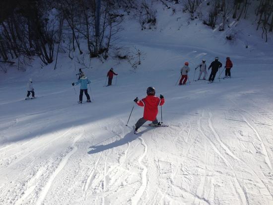 スキーヤーオンリーなので子供も安心|かたしな高原スキー場のクチコミ画像