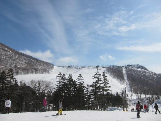 2014シーズンきたーっ!!|栂池高原スキー場のクチコミ画像