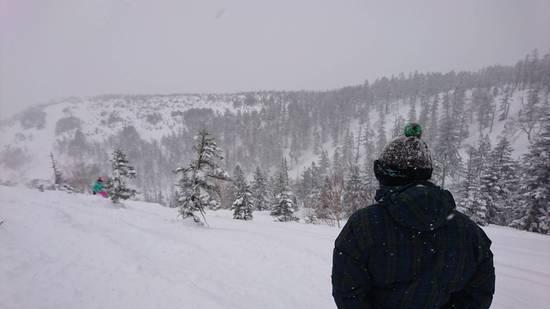 パウダー|かぐらスキー場のクチコミ画像