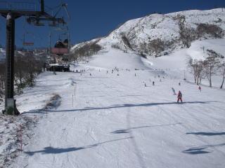 雪質良いですね|苗場スキー場のクチコミ画像