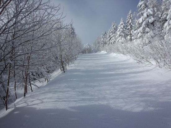 コンディション最高!|パルコールつま恋スキーリゾートのクチコミ画像1