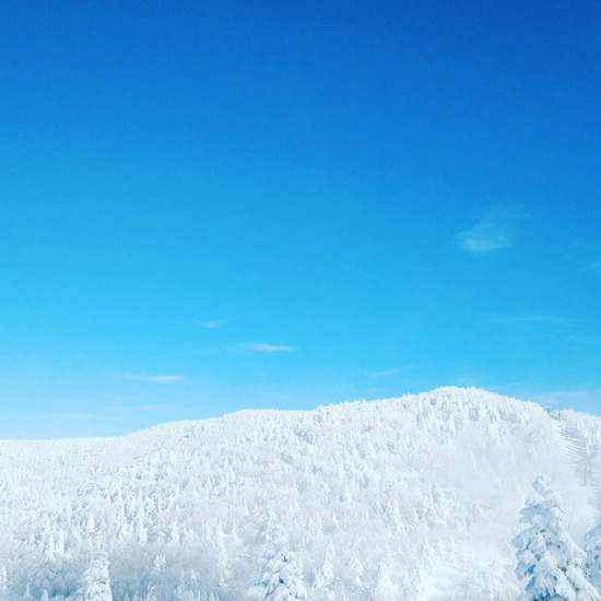 竜王山頂の樹氷群|竜王スキーパークのクチコミ画像