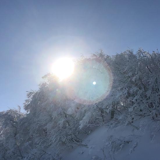 かがやき|斑尾高原スキー場のクチコミ画像