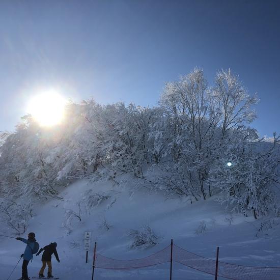 かがやき|斑尾高原スキー場のクチコミ画像2