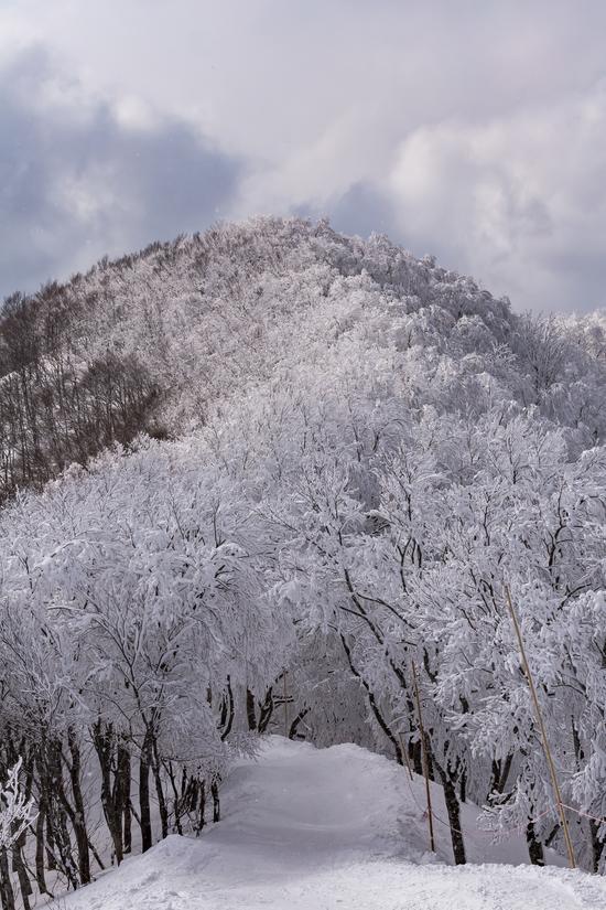 斑尾の絶景|斑尾高原スキー場のクチコミ画像2