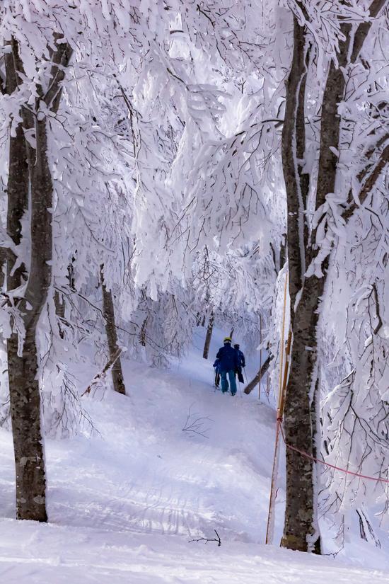 斑尾の絶景|斑尾高原スキー場のクチコミ画像3