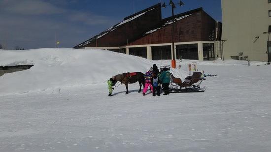 初心者でも安心できる|ニュー・グリーンピア津南スキー場のクチコミ画像3