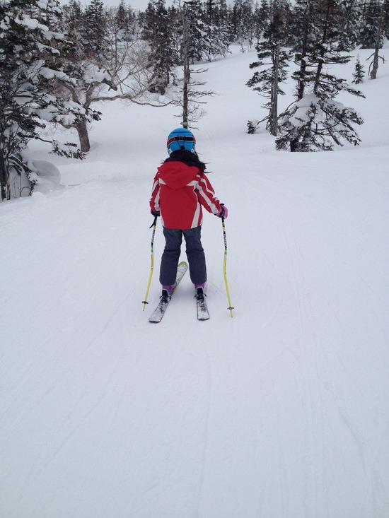 網張温泉スキー場のフォトギャラリー4