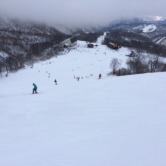 雪不足でもここは心配なし!|かぐらスキー場のクチコミ画像
