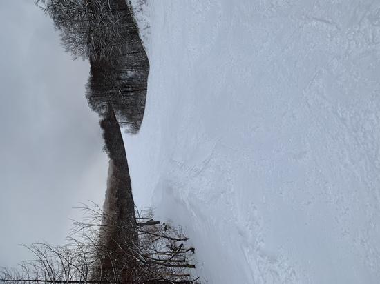雪不足なのに有る様に見えます ホワイトワールド尾瀬岩鞍のクチコミ画像2