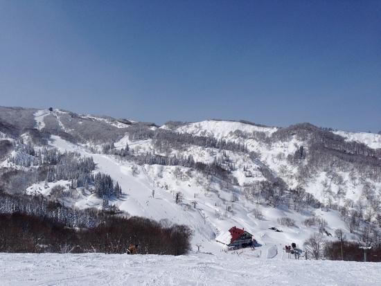 ここまで来た人の特権|上越国際スキー場のクチコミ画像