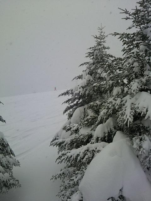 雪がすごい|奥神鍋スキー場のクチコミ画像1