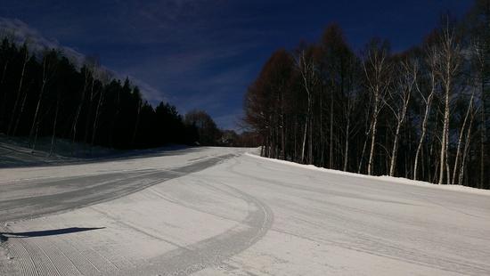最高|かたしな高原スキー場のクチコミ画像