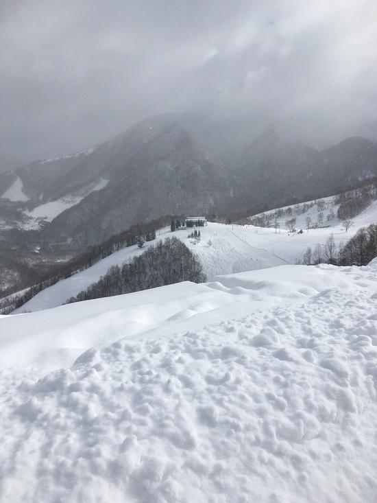 パウダー 飛騨ほおのき平スキー場のクチコミ画像