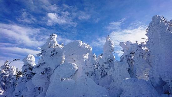 2019信州ツアースタート♪(4日目)|志賀高原 熊の湯スキー場のクチコミ画像