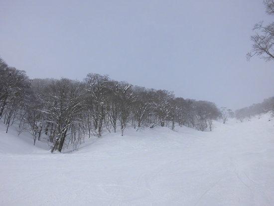 やぶはら高原スキー場のフォトギャラリー4