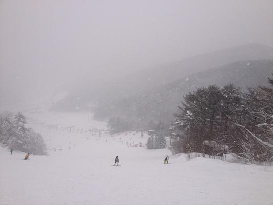 初めて芸北すべり|芸北国際スキー場のクチコミ画像