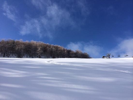 新雪が積もり最高でした!