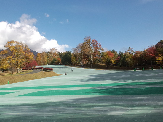 八ヶ岳自然文化園グレステンサマースキー場のフォトギャラリー1