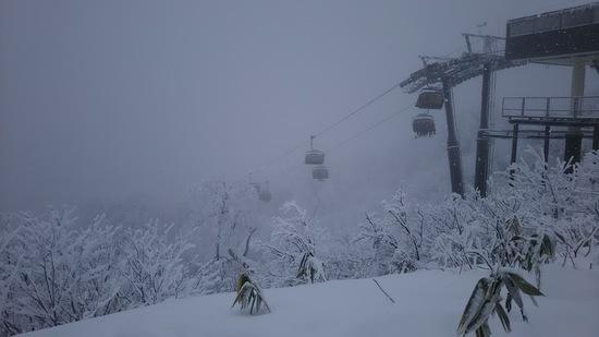 やっと雪が・・・ 野沢温泉スキー場のクチコミ画像
