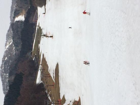 ラスト・ラン|めいほうスキー場のクチコミ画像