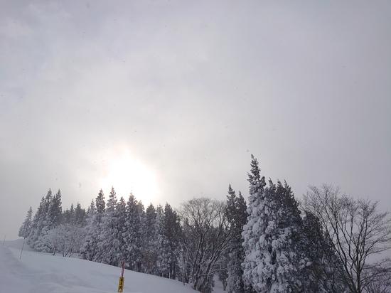 リフト待ちもなく 上越国際スキー場のクチコミ画像