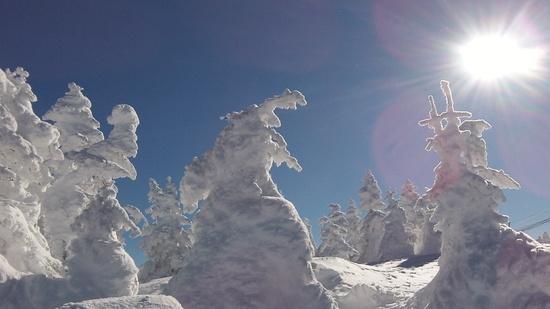 横手山かな?|志賀高原 熊の湯スキー場のクチコミ画像