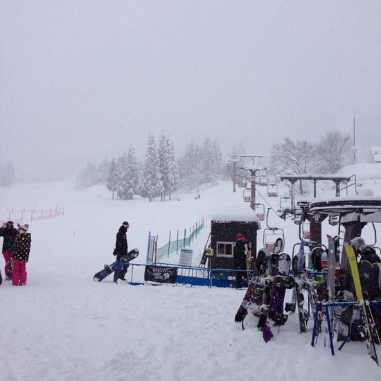 パウダー天国。|六日町八海山スキー場のクチコミ画像
