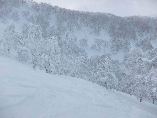 2014/01/20(月) 北海道ルスツリゾートの速報|ルスツリゾートのクチコミ画像