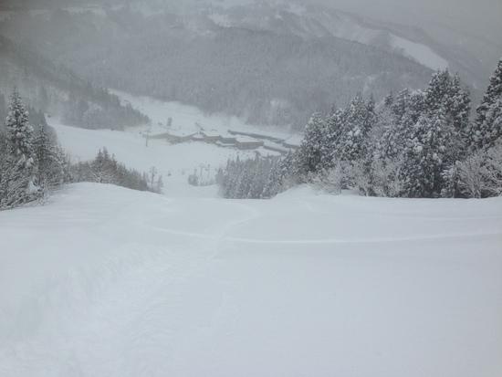 大雪でした。|ウイングヒルズ白鳥リゾートのクチコミ画像