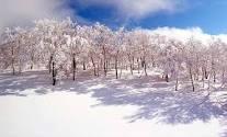 ジャム勝最高\(^o^)/!!|スキージャム勝山のクチコミ画像