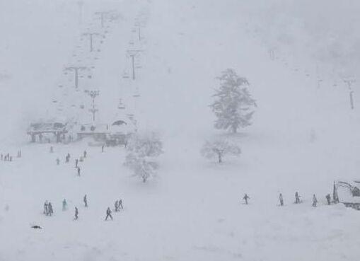 大雪警報!パウダー三昧でした!|上越国際スキー場のクチコミ画像