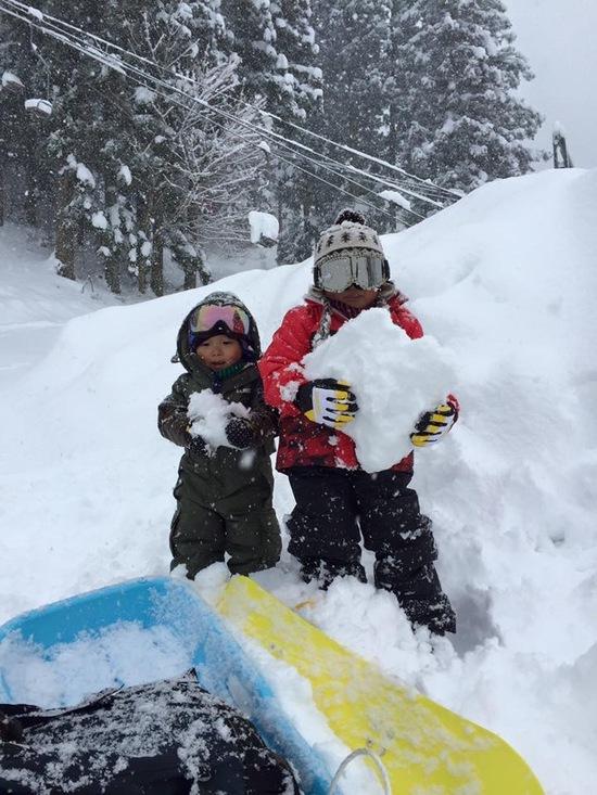 パウダー&圧雪バーン|奥利根スノーパークのクチコミ画像
