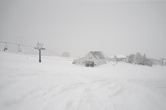 雪質良かったです|岩原スキー場のクチコミ画像