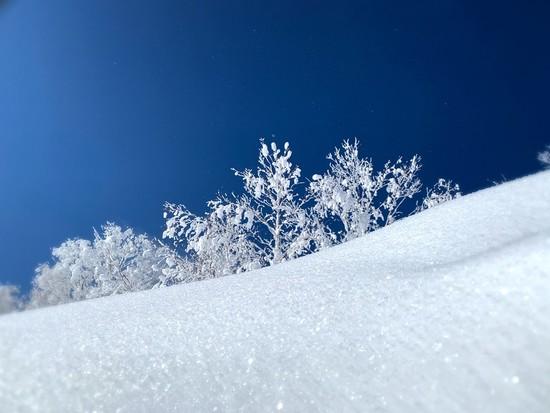 景色最高!|安比高原スキー場のクチコミ画像2