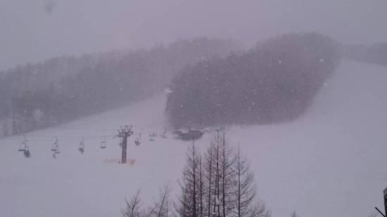 雪の戸隠|戸隠スキー場のクチコミ画像
