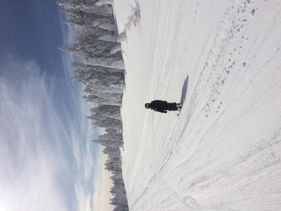 広くて長〜いゲレンデ!!|パルコールつま恋スキーリゾートのクチコミ画像