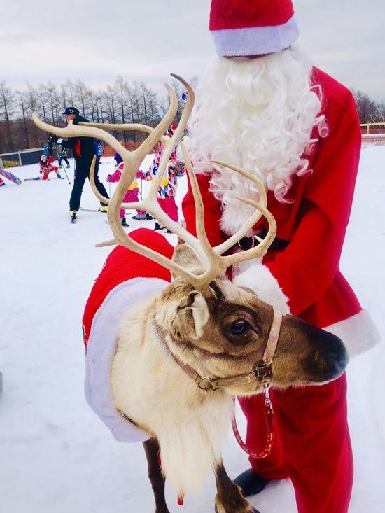 メリークリスマス|マウントジーンズ那須のクチコミ画像