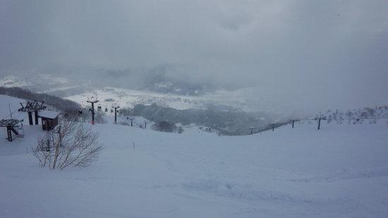 雪質最高です!!!|Hakuba47 ウインタースポーツパークのクチコミ画像