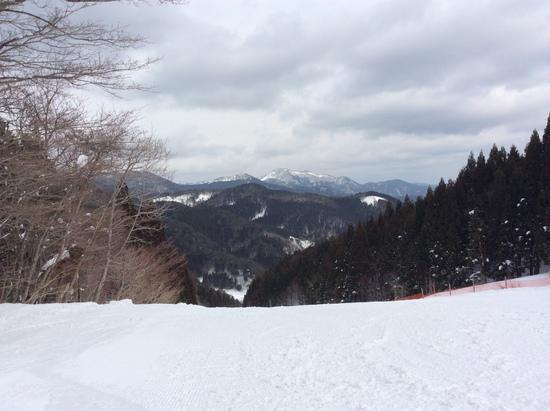 ちくさ高原スキー場のフォトギャラリー2
