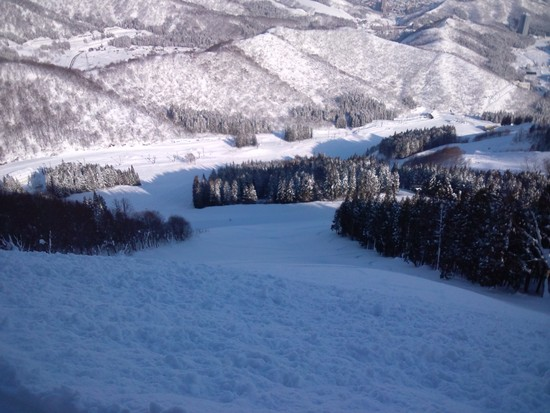 降った翌日は|神立スノーリゾート(旧 神立高原スキー場)のクチコミ画像