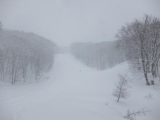 2014/03/21(金) 長野県 白馬岩岳の速報|白馬岩岳スノーフィールドのクチコミ画像2