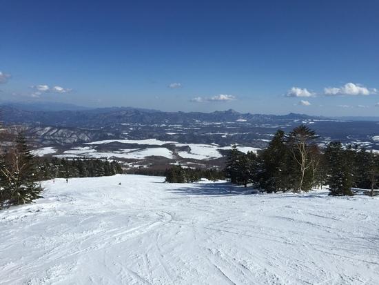 最高のパウダースノー!|パルコールつま恋スキーリゾートのクチコミ画像