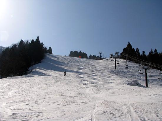 滑りがいのあるスキー場です|立山山麓スキー場のクチコミ画像